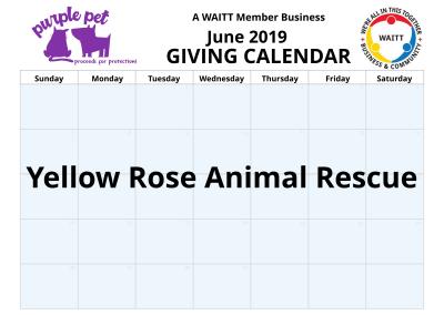 Purple Pet June 2019