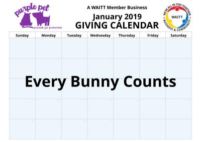 Purple pet January 2019
